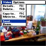 Palm-Facebook-Video